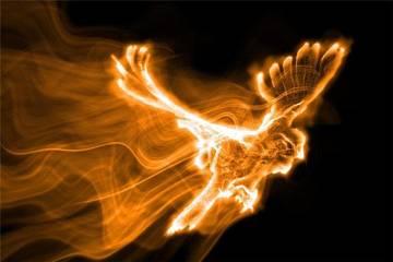 Гнездовье «Золотого Сокола»